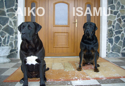 AIKO a ISAMU